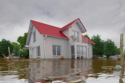 flood quote